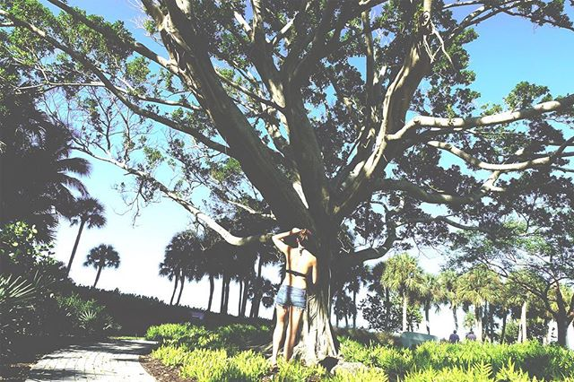 Tree lovin' huggin' #hippy 🌳💚⠀ ****⠀ Here are three reasons why #trees are just great...⠀ •⠀ 1) Trees in a #forest can 'talk' and share nutrients through an underground internet built by soil fungi known as mycelium⠀ •⠀ 2) Their mere presence has been shown to make us calmer, happier and more creative #sciencefacts #behappy⠀ •⠀ 3) #Earth now has 46 percent fewer trees than it did 12,000 years ago 😥⠀ •⠀ Despite our deep-rooted reliance on trees, we tend to take them for granted. So next time you see a tree, take notice and give it a hug to say thank you (or a swift nod if you think society will judge you) 🤗⠀ .⠀ .⠀ .⠀ .⠀ #natureisawesome #environment #sustainability #sustainableliving #ecowarrior #exploreeverything #instamood #instaphoto #naturephotography #treesofinstagram #naturelovers #nature
