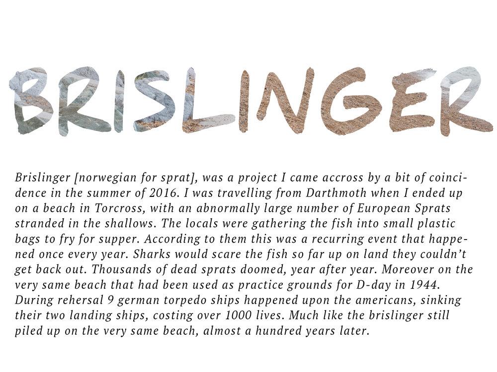 brislinger cover2.jpg