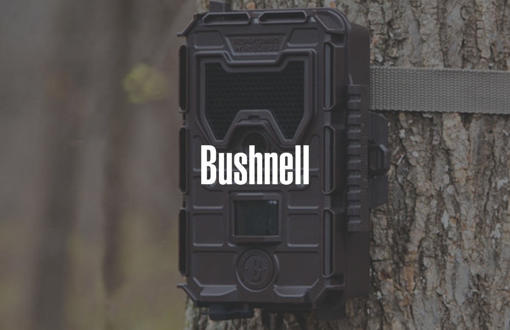 Bushnell Cover Page.jpg
