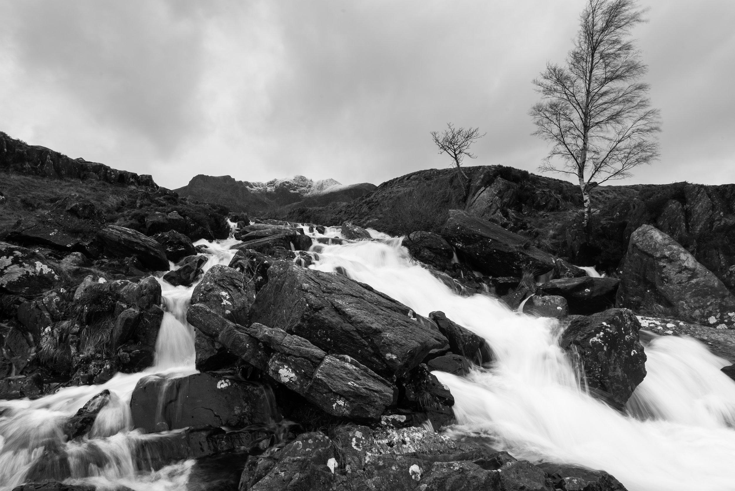 Idwal stream-1470