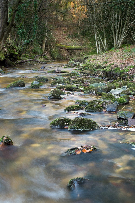 Clywedog river