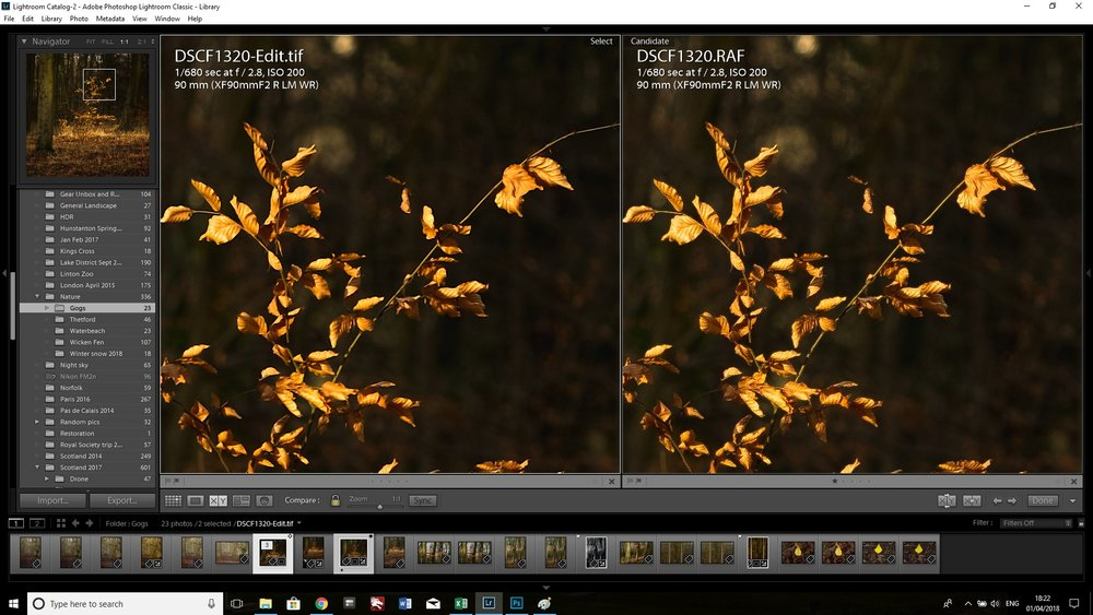 Comparison of images post-sharpening.  Left: sharpened file from PS using unsharp mask; Right: sharpening in Lightroom at 95.