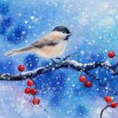 Birds of Winter - Tiffany Arnold, InstructorDecember 5th, 6:30 PMMeza Wine Shop