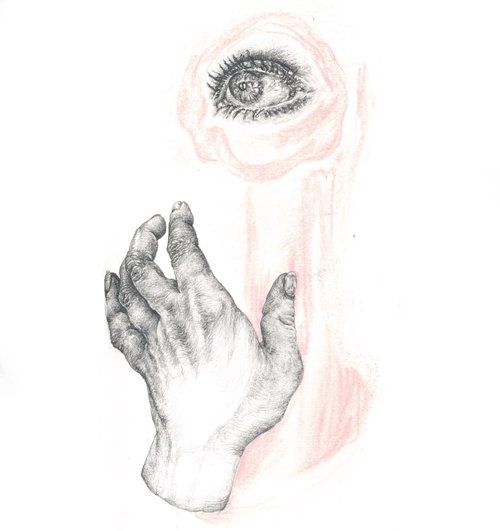 """The Eye of the Beholder"" - Pencil & pastels on heavyweight paper - 20 cm x 30 cm"