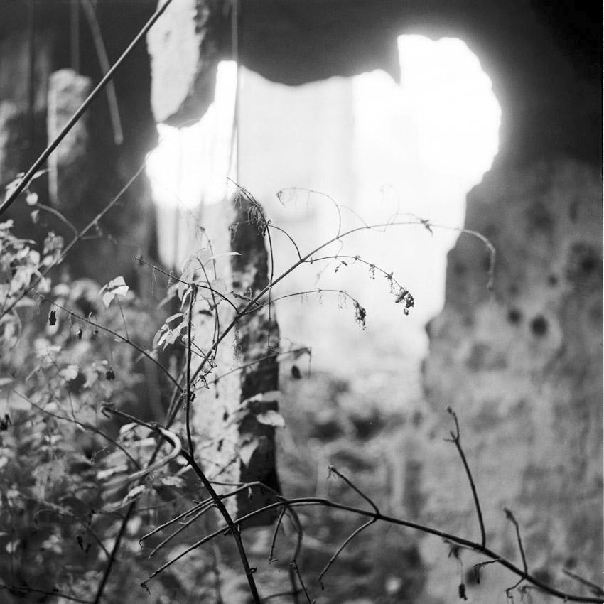 Dans les ruines d'un bâtiment public à Sarajevo