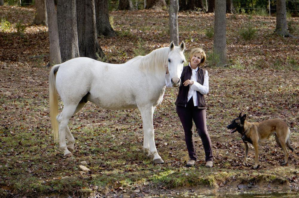 PENNSLYVANIA - SELF REALIZATION THROUGH THE TRAINING OF HORSES - Jul 14, 2017 – Jul 17, 2017