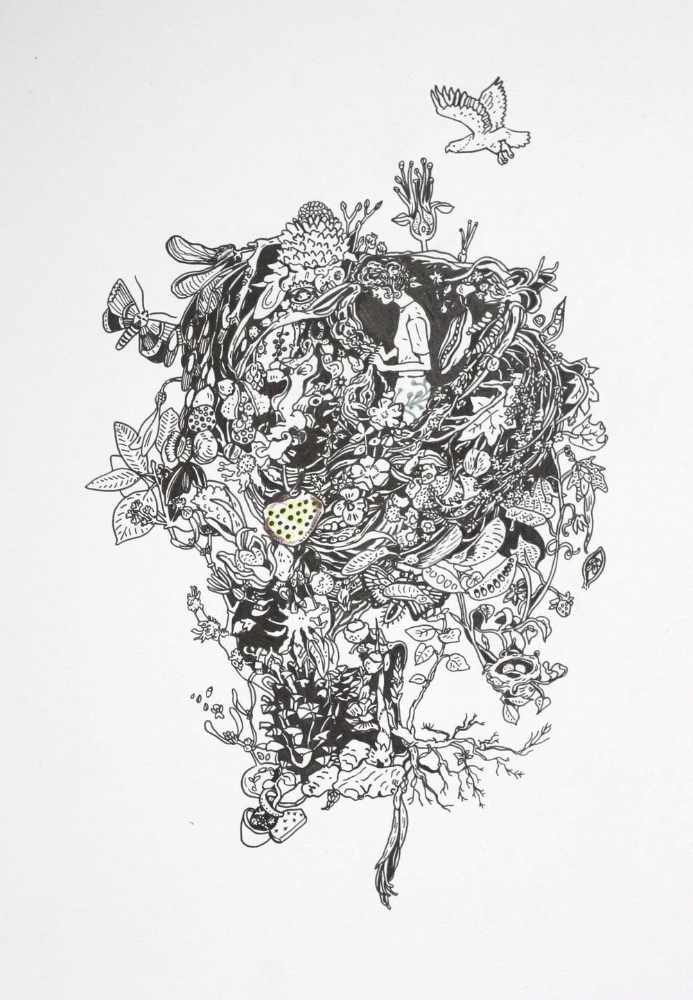 """Rachel Carson, pen on paper, framed, 20"""" by 16"""", 2016, $200"""