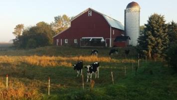 Minnesota farmstead