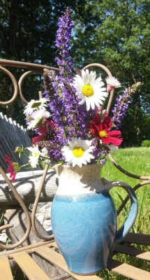 Salvia, cosmos, allium, and daisy