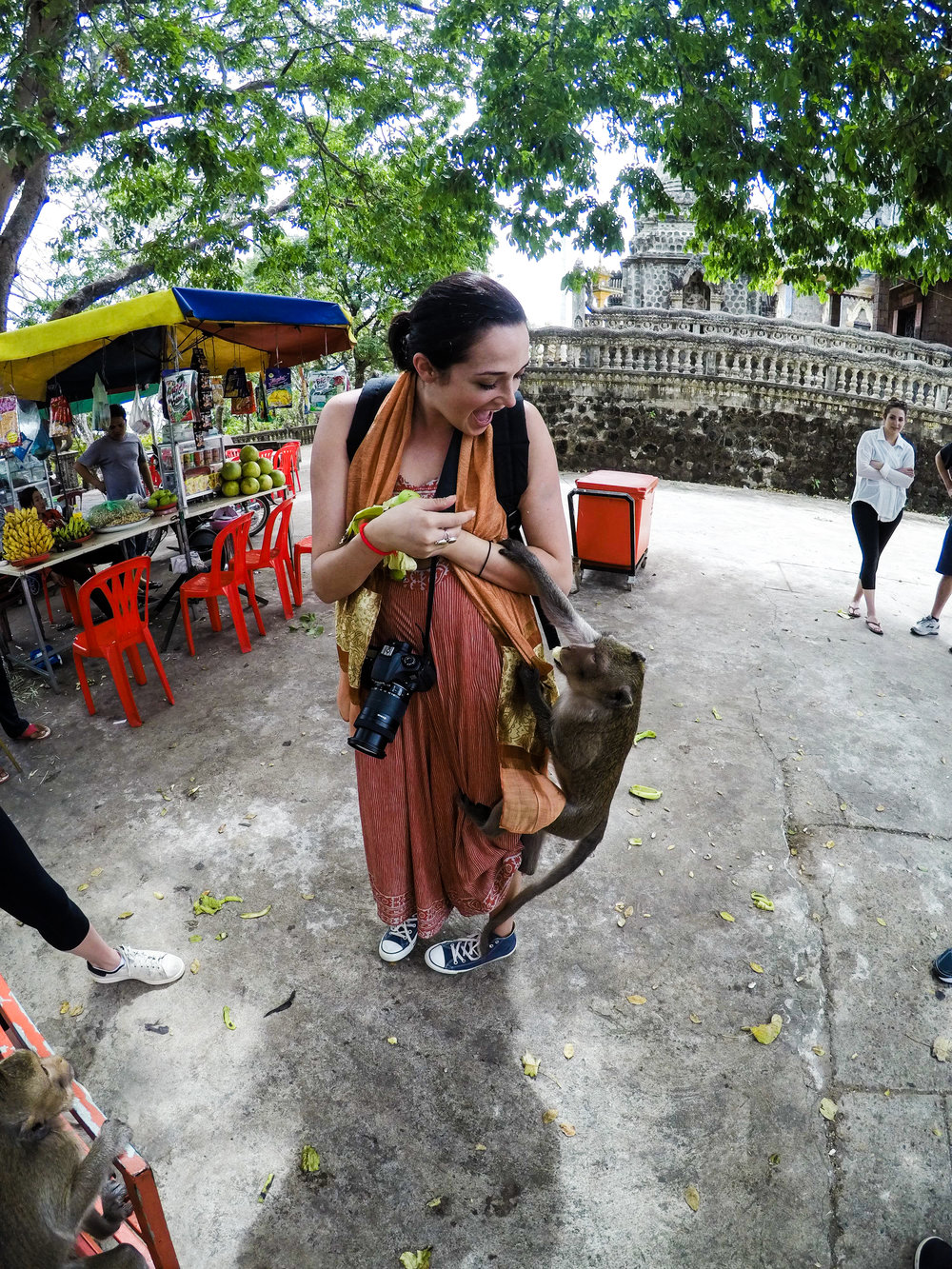 Feeding Monkeys in kampong Cham