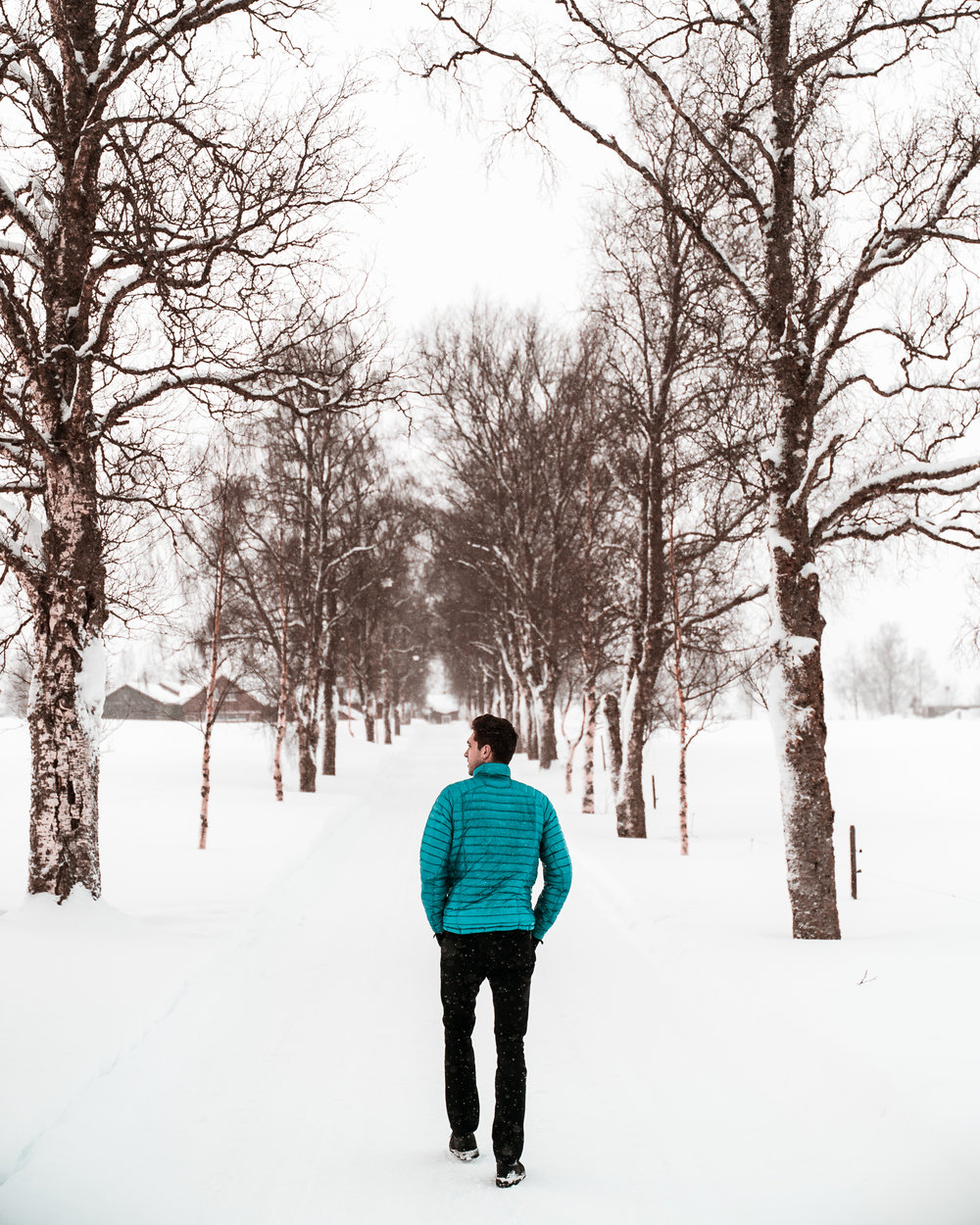 Snow-01086.jpg