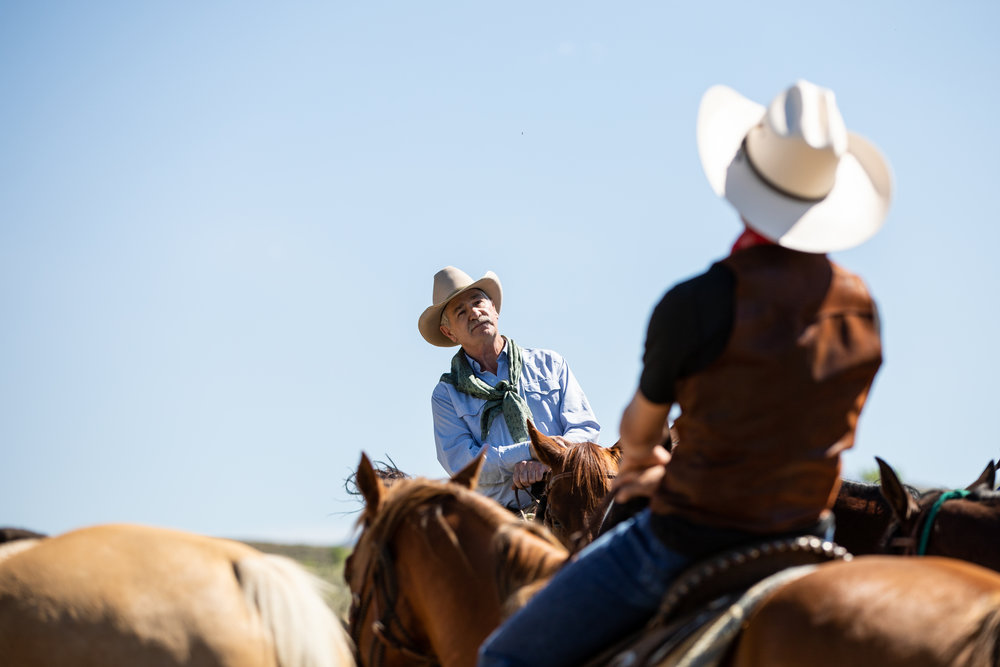 Negotiating the price of the cattle with ranch owner