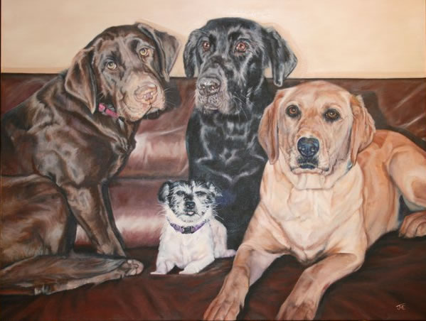 Bill Moore's Dogs