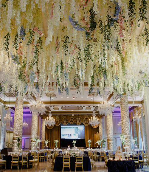 Gold Coast Enchantment - the drake hotel, chicago