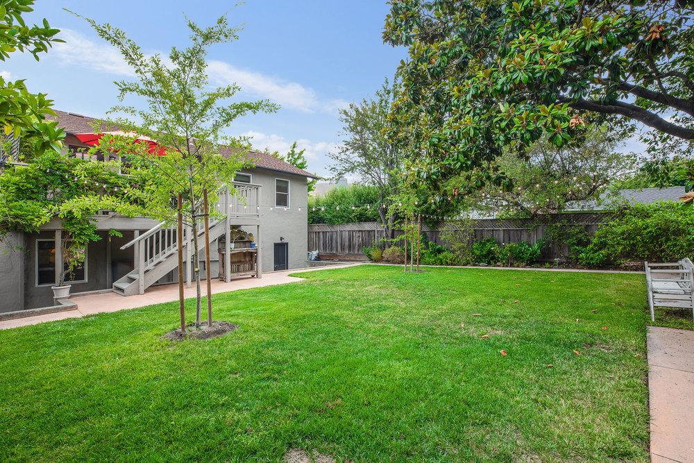 Backyard lawn - 2.jpg