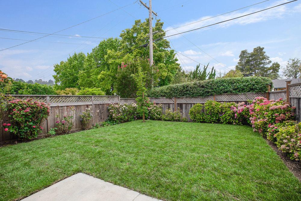 Front yard - lawn.jpg