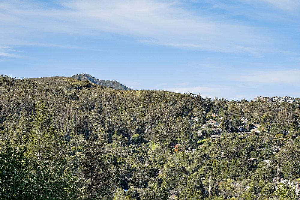 Views 2 - Tam Hills.jpg