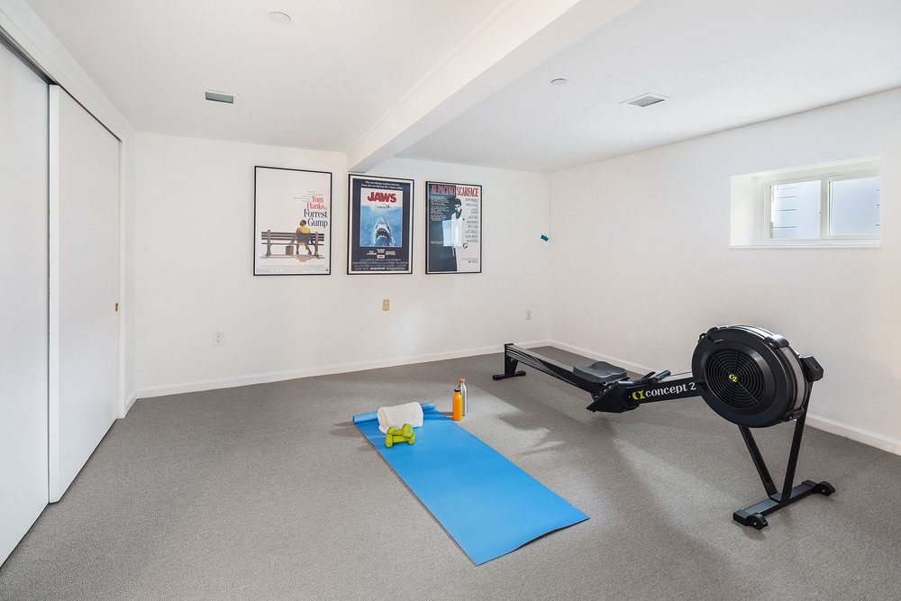 Bonus carpet gym 1.jpg