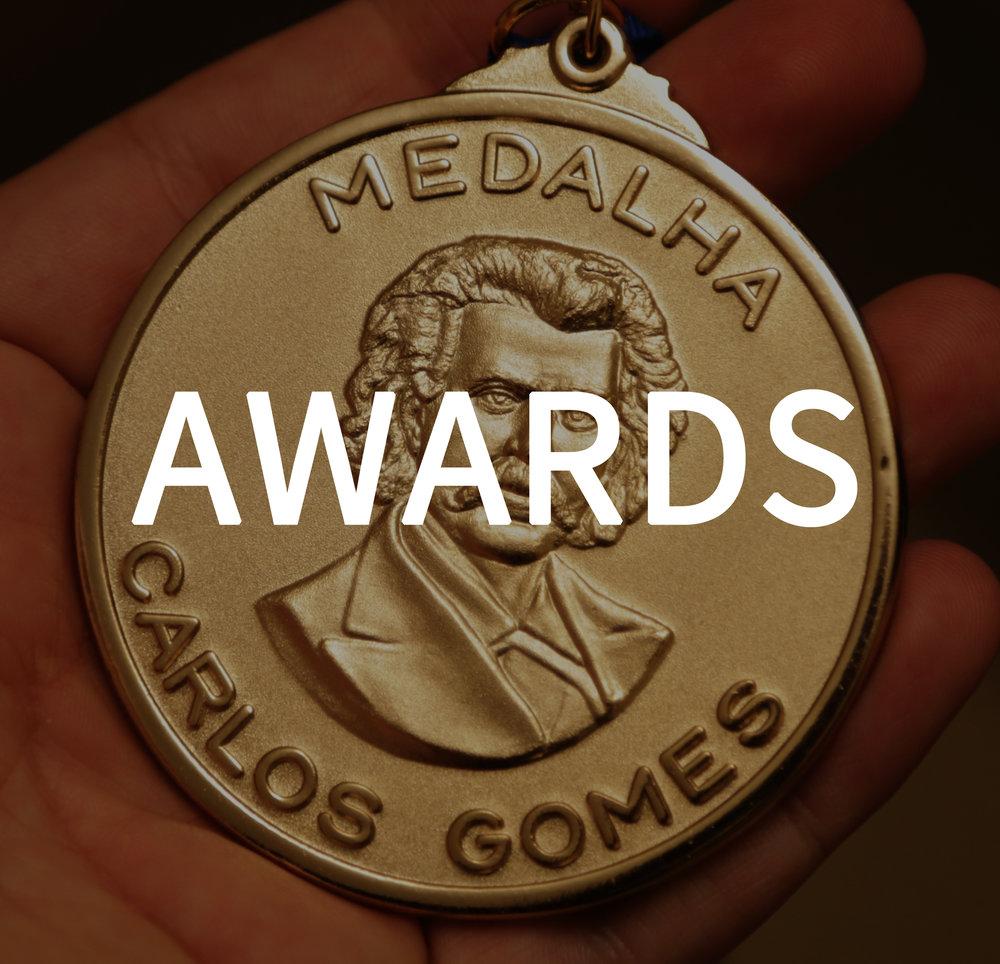 awards botao.jpg