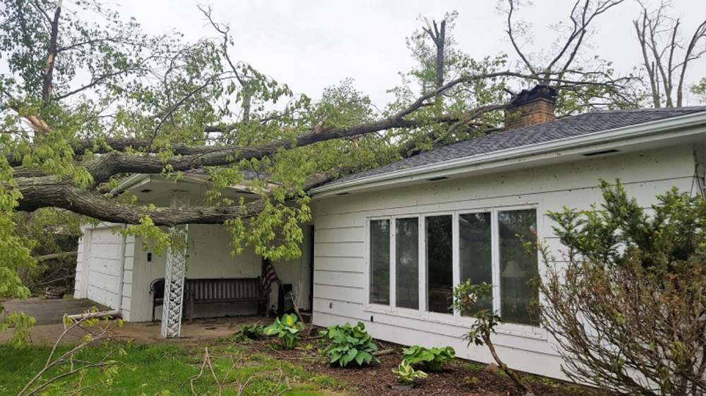 Fallen trees penetrated Adele's living room, a bedroom and the garage.