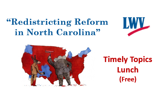 Redistricting panel.PNG