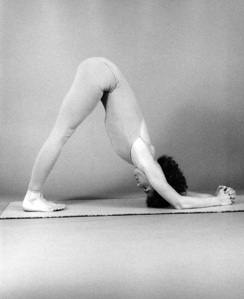 patty-townsend---1985---dolphin-prep-for-sirsasana_7553038396_o.jpg