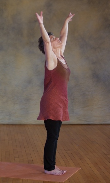 sun-salutation--patty-townsend_8365173746_o.jpg