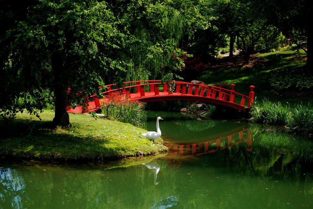 Schnormeier Gardens.jpg