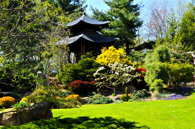 Schnormeier Gardens 4.jpg