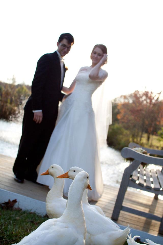 Bride, Groom, & Ducks.jpg