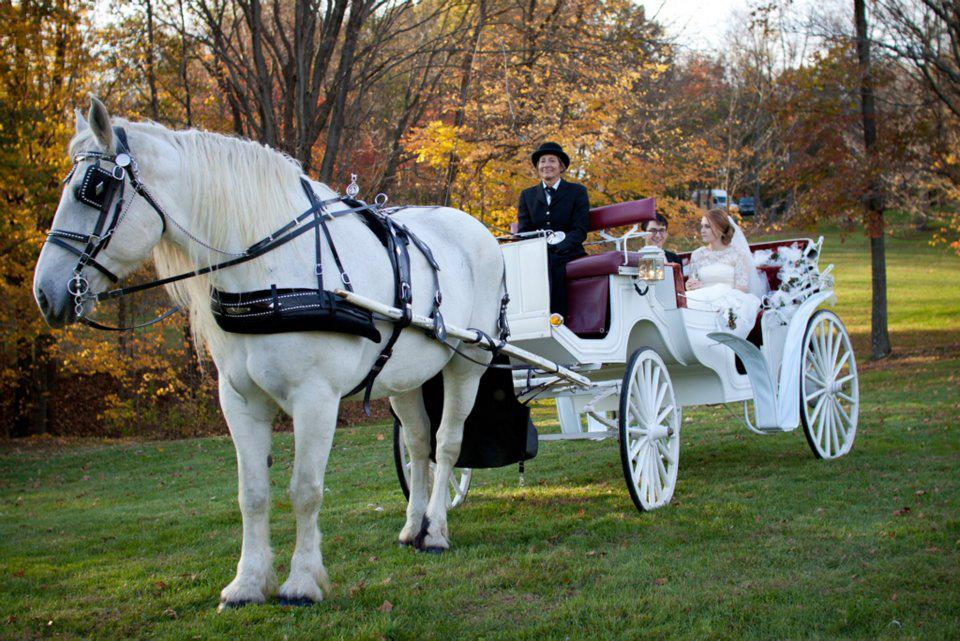 Carriage at the Pond - Toby, Diane, Bride & Groom.jpg