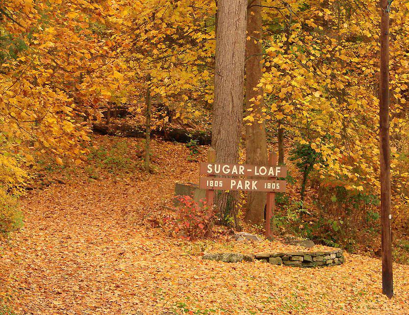 Sugar Loaf Park 2.jpg