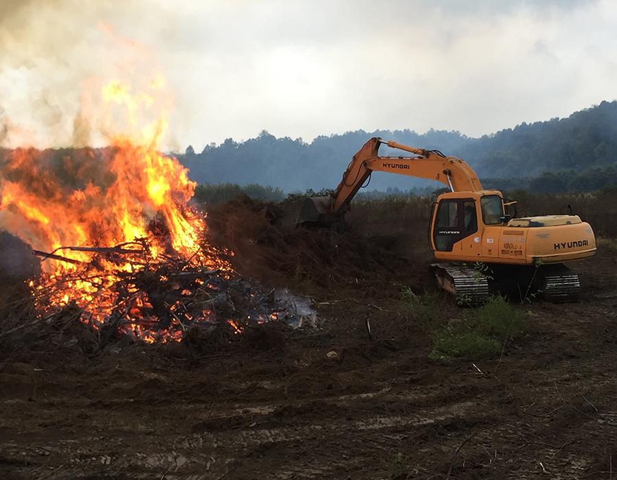 Track Hoe burning brush