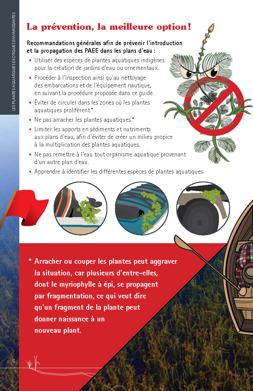 Guide_Myriophylle_FR_Page_06.png
