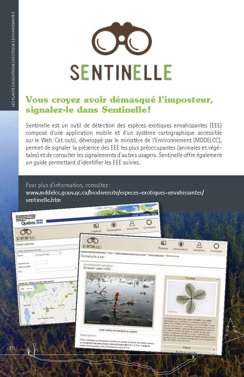 Guide_Myriophylle_FR_Page_10.png