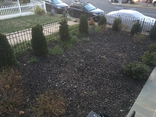 Mulch work 2.JPG