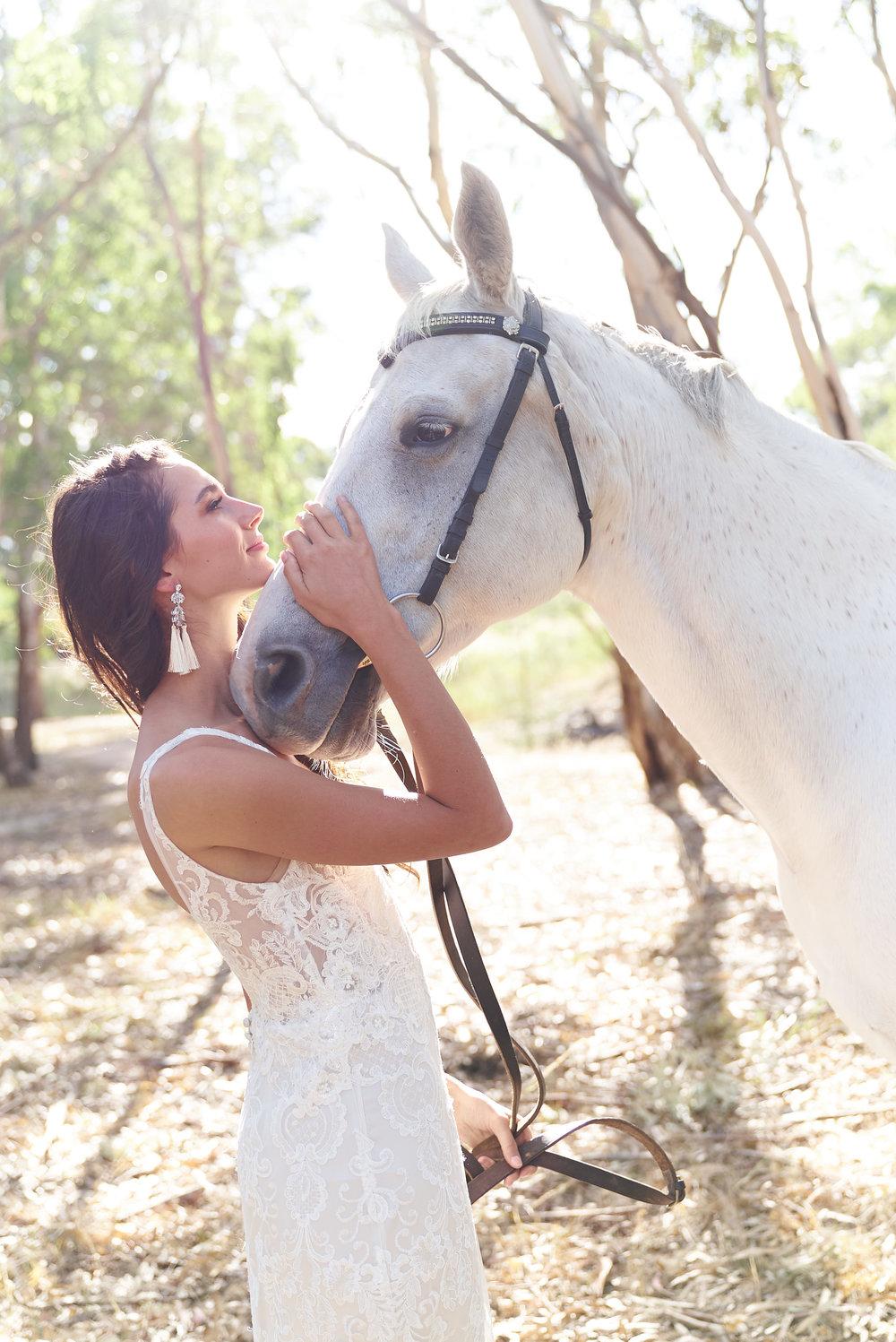 Anna Campbell Bridal | Harlow Dress | Modern Lace Wedding Dress