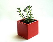 Little Modern Glossy Red Ceramic Cube Planter, Modern Red Vase, Red Ceramic Vase, Red Modern Planter, Valentine's Day Decor (Without Plants)
