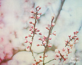 Flower Photography, Nature Photography, Springtime, Girls Room Decor, Dreamy Whimsical - Small & Soft