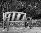 Landscape Photography - Weathered Bench - 8x12  Fine Art Photo - Park Bench, Fine Art Photograph, Black and White Photo, Lonely Bench