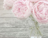 Large Wall Art, Flower Photograph, Pink Peonies in a Mason Jar, Fine Art Photography Print, Shabby Chic, Nursery Art, Pastel Pink, Gray
