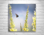 Floral Art, Butterflies in Art, Nature Photography, Butterfly Print, Pastel Art, Spring Flowers, Square Art, Square Print, Square Picture