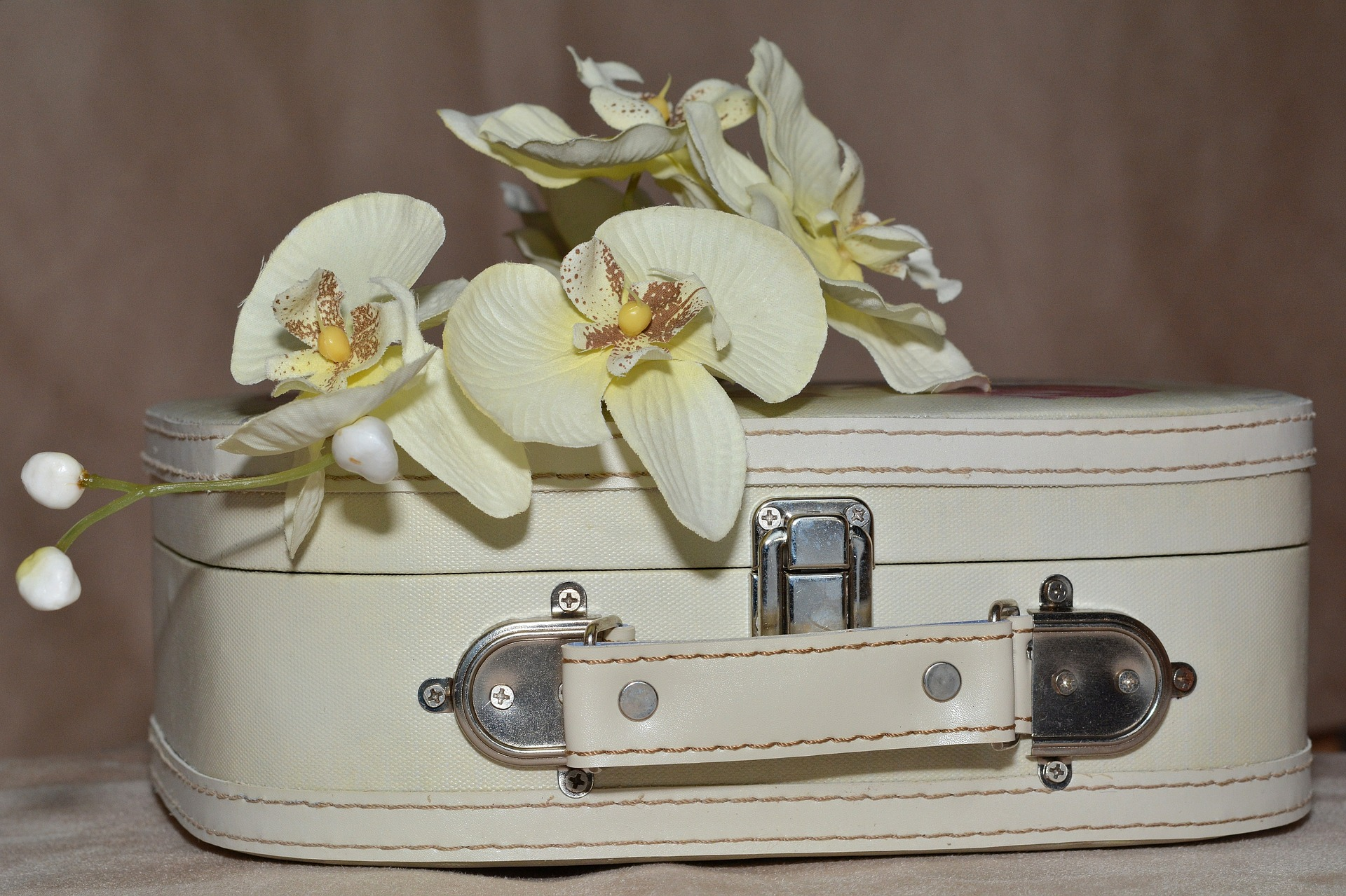 luggage-606542_1920