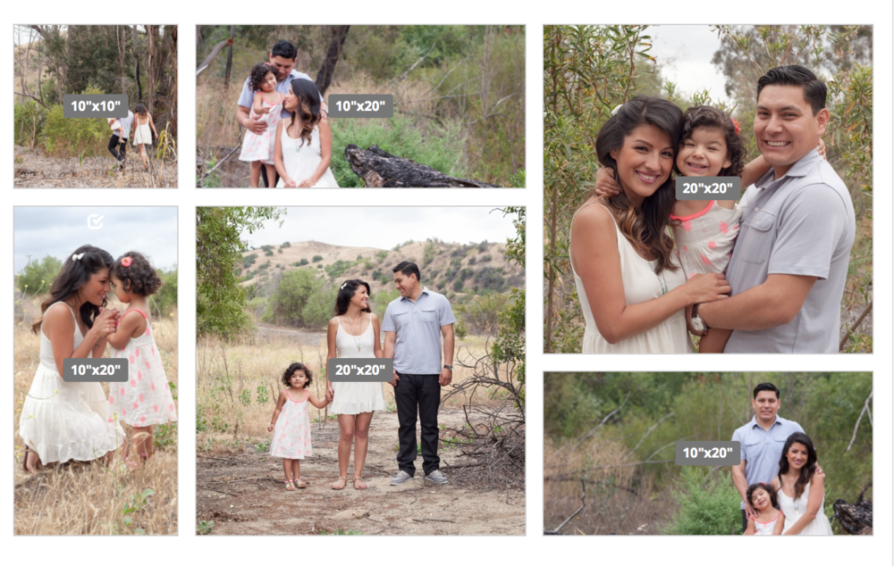 Sample of a Canvas Group Set a Client made after their Family Portrait Session
