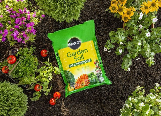 Ready to start up your vegetable garden? Doody Home Center has everything you'll need! Stop in, to pick up Miracle Grow seed and soil today! Check out our full list of month-long sales on our website (link in bio)