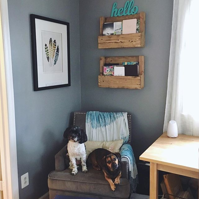 Happy Sunday friends☺️ My awesome Hubby made me some book shelves for my bible studies! I love the way they make my little reading nook feel more cozy😍 oh and there are some cute pups to cheer up Your rainy Sunday🐶🐶 . . . #lazysunday #readingnook #bookshelves #rusticdecor #palletwood #palletwoodshelves #woodworking #woodwork