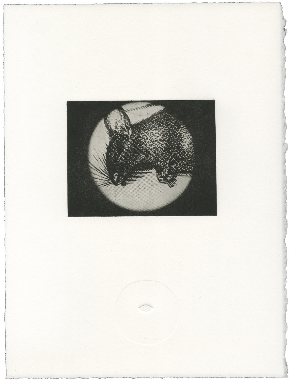 On The Floor , Polymer Intaglio with Blind Emboss, 11x14 inches, 2014