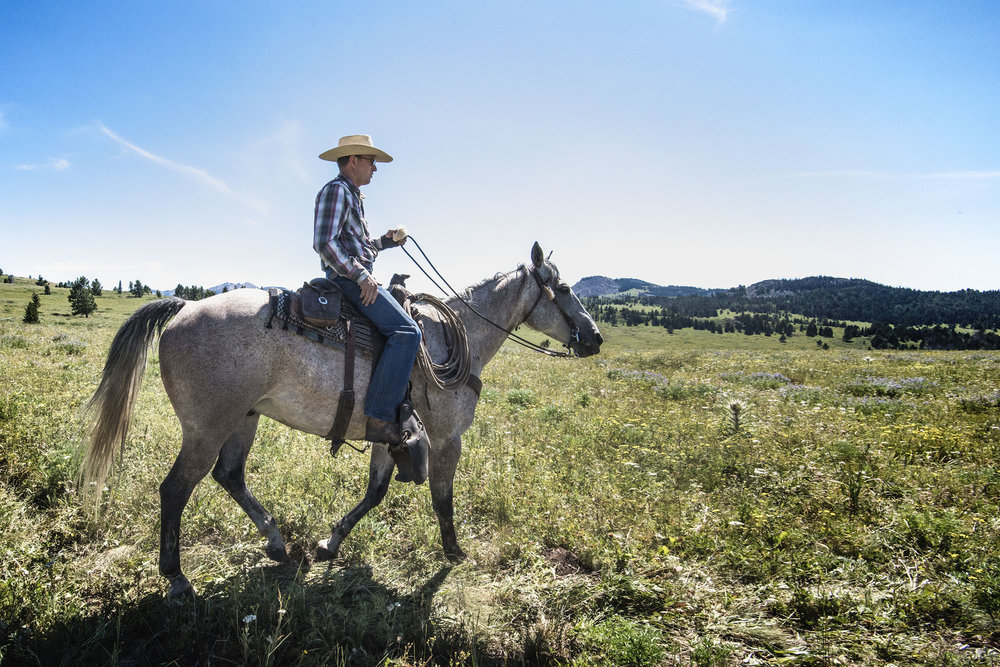 Montana rancher dating site