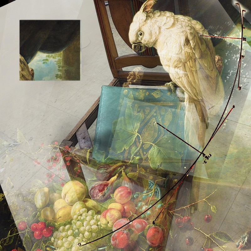 sketch for still life with chair, Utrecht cockatoo and fruit