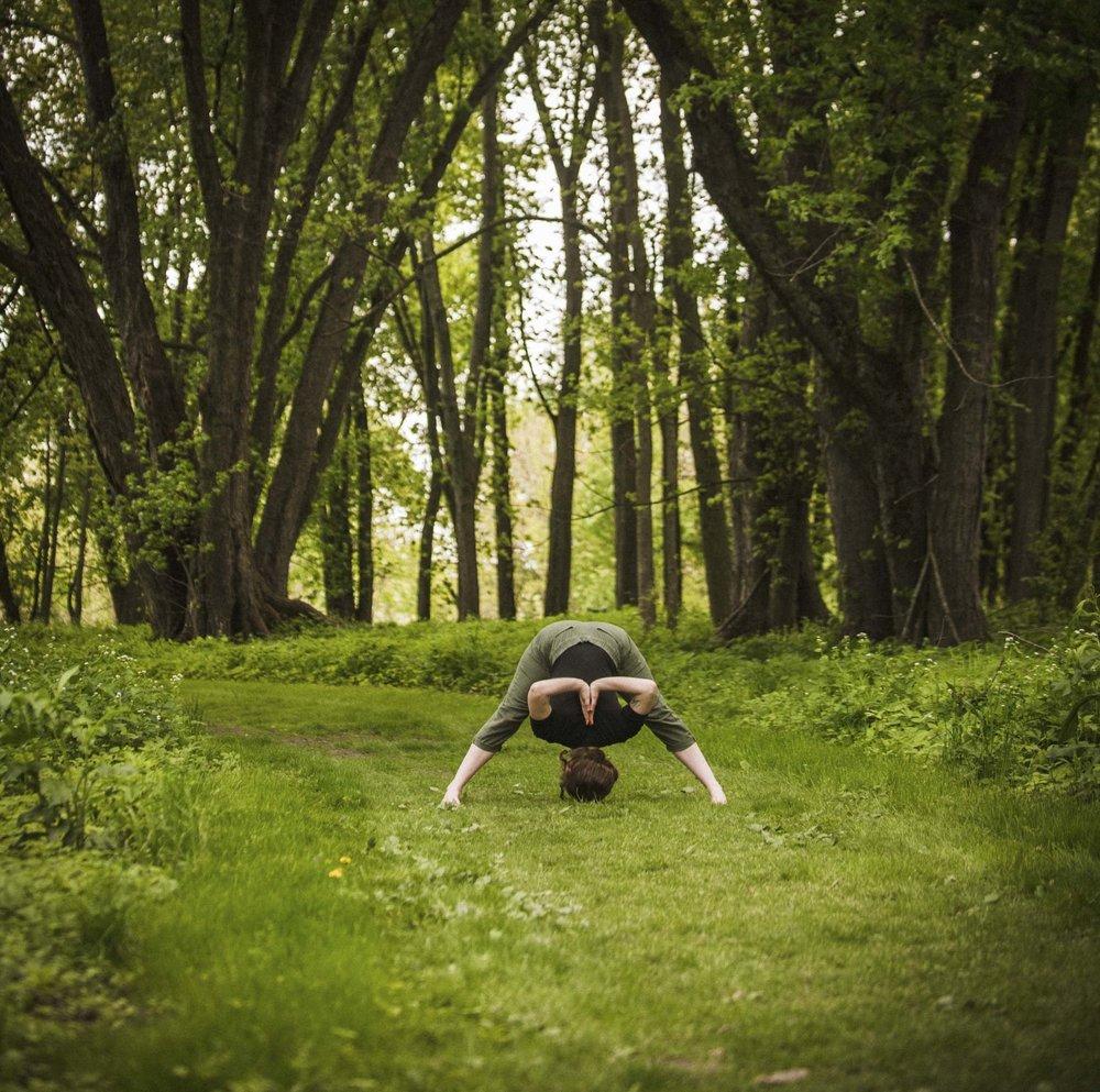 forward bend organs yoga